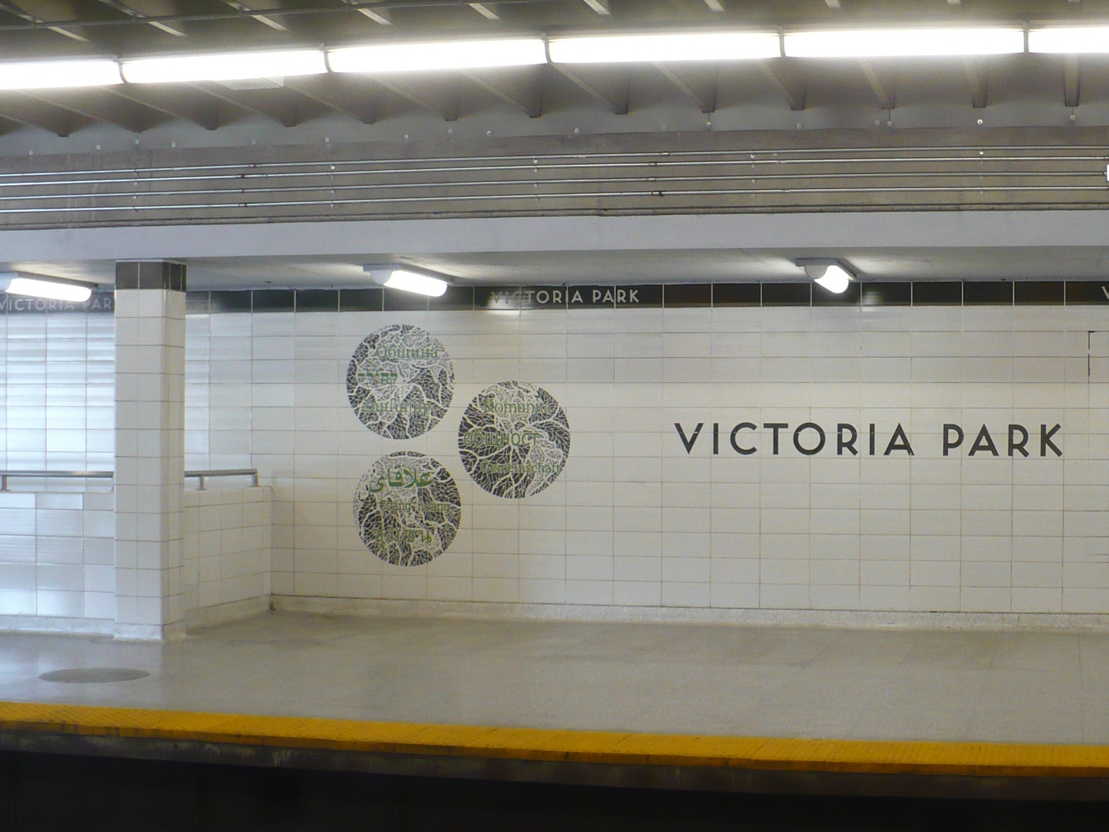Playmates Ttc Toronto Mississauga Escort Victoria Ellesmere Park