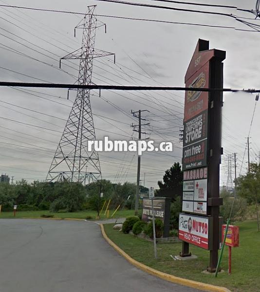 Saisissez And Airport 427 Road Black Escort Dixon By