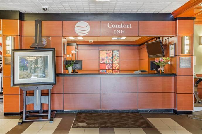 Escort Airport Hwy Mississauga Toronto Motel