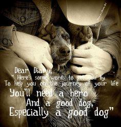 Gastonia Dog Especially A