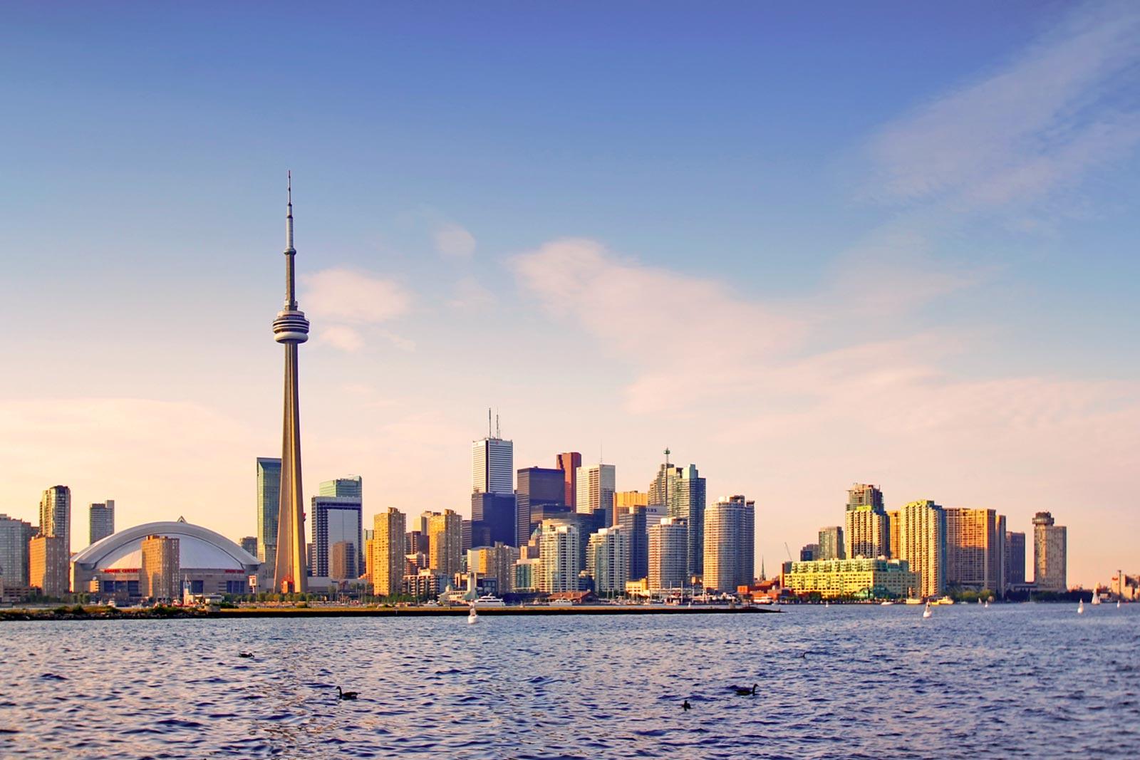 For 40 Call Yonge City Booking Of Toronto Escort Gerrard