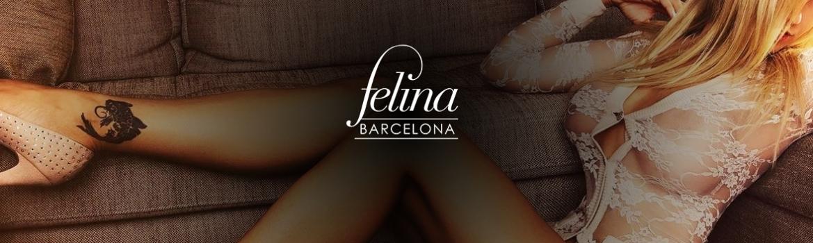 Straigjt Bcn Barcelona Brothels Felina