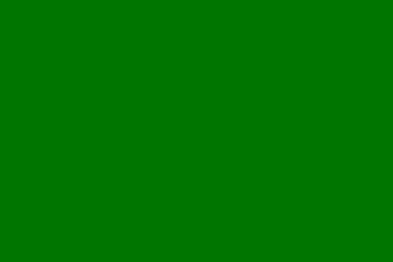 Green Black Divorced Dating