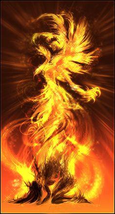 Phoenix Female Need A